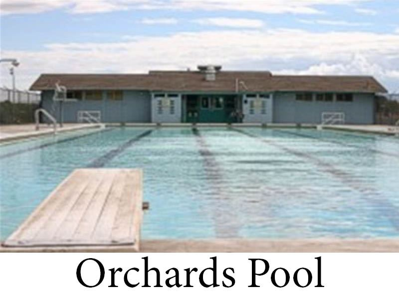 Orchards Pool Picture